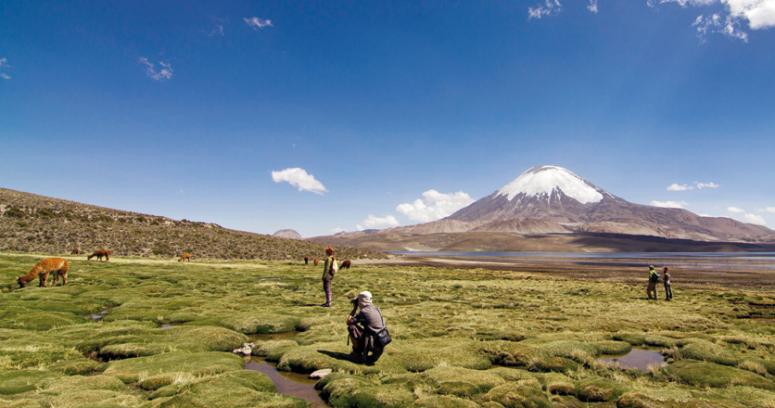 Estas son las diez reservas de la biósfera que se encuentran en Chile