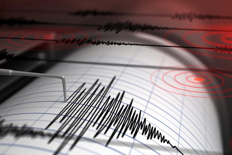 Todas las magnitudes: CSN confirma diez temblores en menos de 30 minutos