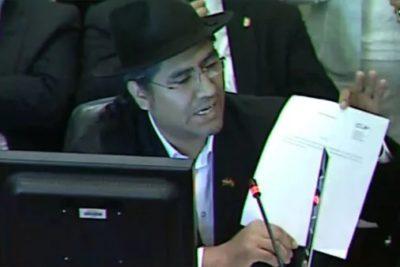 """Venezuela y Bolivia denuncian """"golpe de Estado"""" en la OEA y califican sesión como """"ilegal"""""""