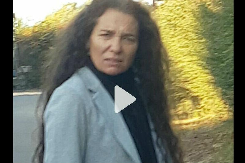 VIDEO   Vecina denuncia a mujer con arma en mano disparando a perro mestizo en Chicureo