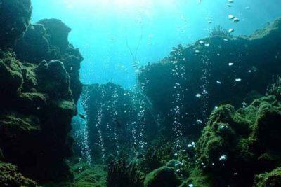 Chile será sede del próximo Congreso de Áreas Marinas Protegidas
