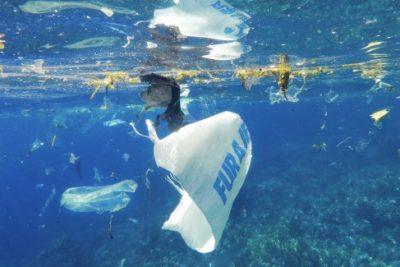 """Greenpeace por ley de bolsas plásticas: """"Menos del 12% del plástico se ha reciclado ennuestro país"""""""