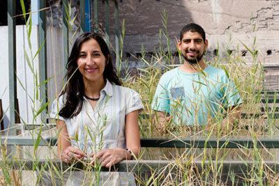 Investigadoras chilenas exploran nuevos mecanismos para extraer el arsénico del agua