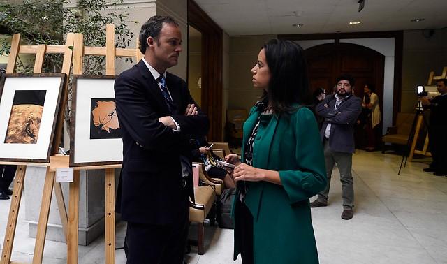 OAS: Chile Vamos va a Brasil para recabar información