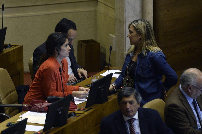 """""""Así con los gustitos ideológicos de Camila"""": diputada Hoffmann repasa a Vallejo por educación"""