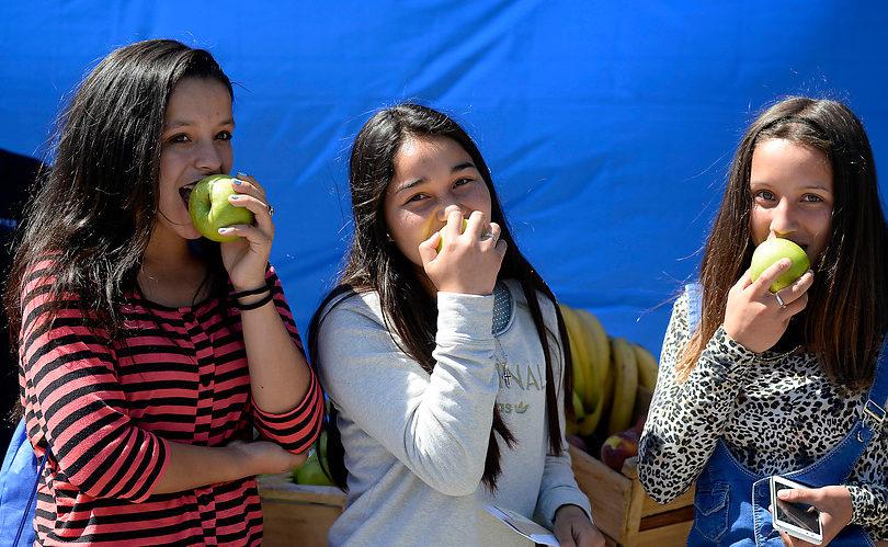 El efecto de una mala alimentación de nuestros hijos