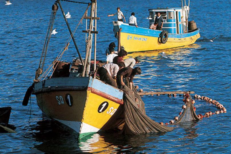 """Ley de Pesca: acusan que cambios mantienen beneficios a pesqueras y es un """"regalo a las 7 familias"""""""