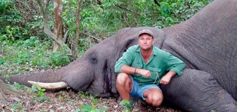 Cazador pierde la vida tras ser aplastado por un elefante tras disparar contra sus crías