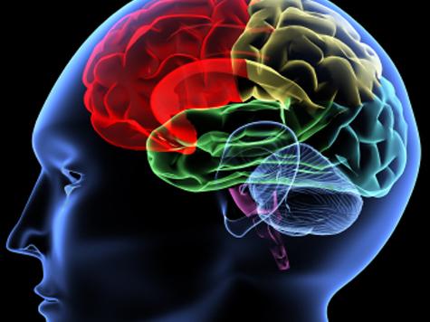 Crean procesadores cerebrales que podrían revertir la parálisis en pacientes