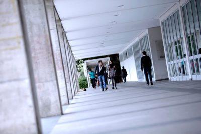 U. de Concepción se querella por tráfico de drogas al interior de la universidad