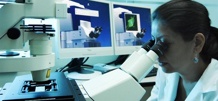 """Expertos muestran preocupación por """"politización"""" del Ministerio de Ciencia y Tecnología"""