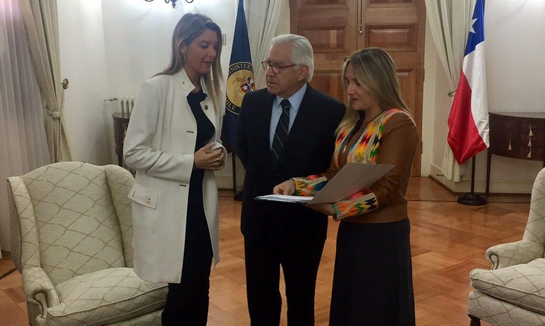 Hoffmann y Sabat llegan a La Moneda a pedir urgencia en reformas a Carabineros