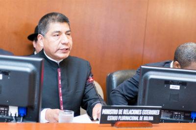 """Bolivia denuncia a Chile en la OEA por """"tortura"""" contra nueve detenidos"""