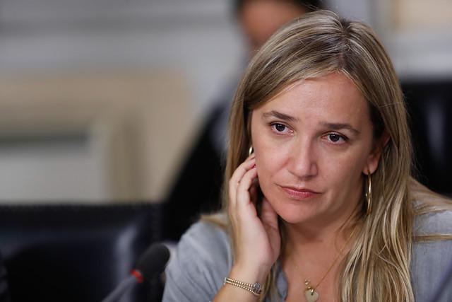 Pepa Hoffmann pide renuncia de directiva UDI por bajos resultados parlamentarios