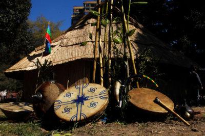 Diferencias de ingresos población indígenas v/s no indígena