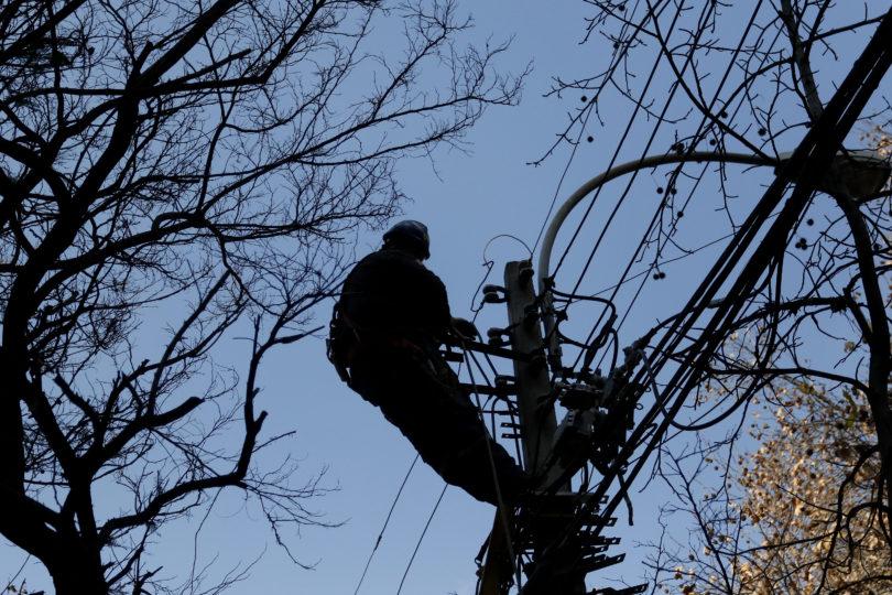 Cómo Enel viola el reglamento eléctrico con la poda árboles