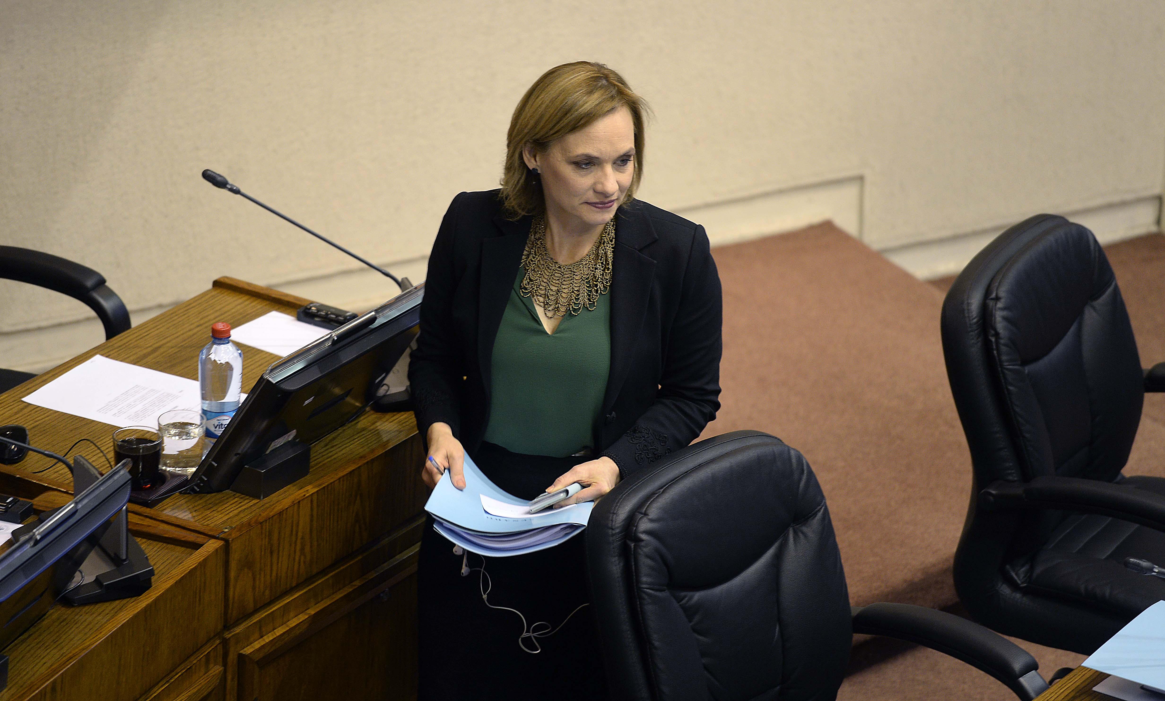 """DC rechaza críticas a Goic por """"no alinear"""" a diputados en aborto y cuestionan al PPD y PR"""