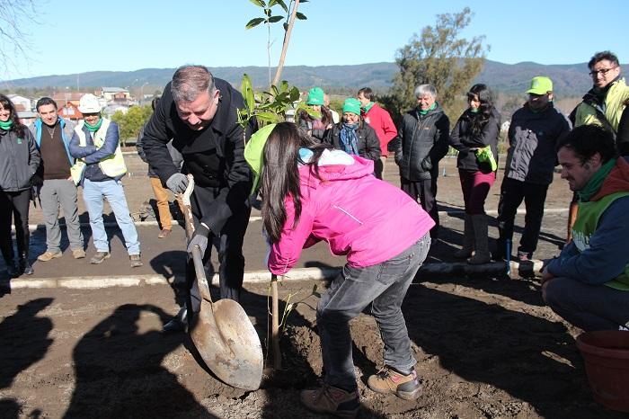 Parque Alessandri de Nacimiento empieza a cobrar vida con plantación comunitaria