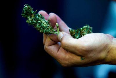 Los Ángeles aprueba el consumo recreacional de marihuana