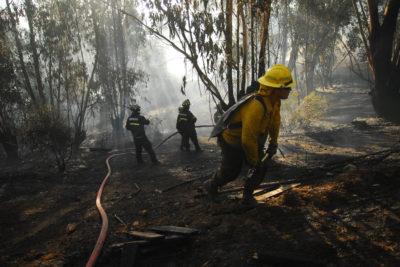 Silent Hero: el invento de jóvenes chilenos que pretende evitar muerte de bomberos en incendios forestales