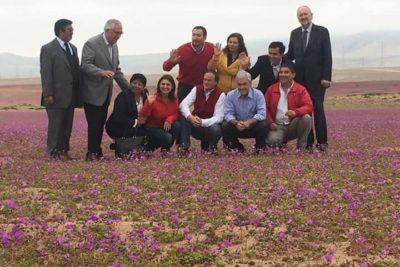 FOTOS |Piñera contraviene la norma y pisa flores del Desierto Florido en actividad de campaña