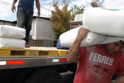 """Manejo manual de carga: más allá de la """"Ley del saco"""""""