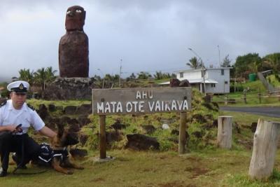 FOTOS   Vector, el primer can antidrogas de Isla de Pascua