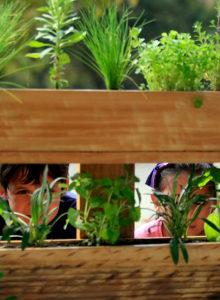 Así funciona el plan de reciclaje para empresas turísticas y gastronómicas de Concón