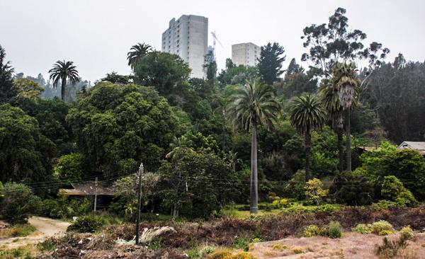 Alcalde Sharp y millonario proyecto inmobiliario en su comuna