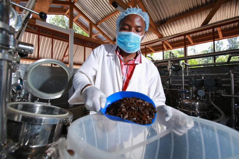 Atención, innovadores: premio repartirá más de USD 500.000 para proyectos de nutrición, agua y desarrollo rural