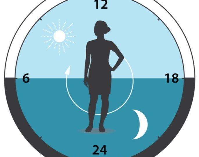 Biología del tiempo