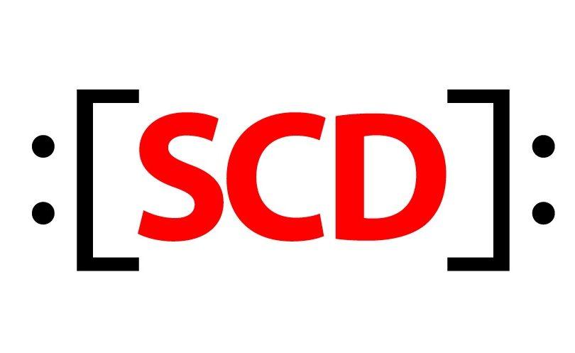 Tiemblan los jingles: SDC amenaza con acciones legales contra candidatos