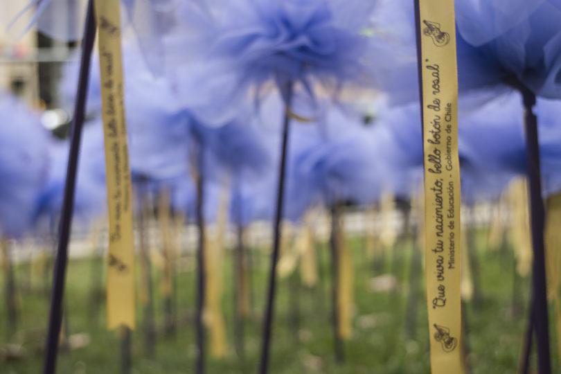 FOTOS   Santiago se viste de flores para celebrar los 100 años de Violeta Parra