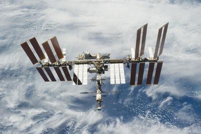 Astronautas descubren especie desconocida en las paredes exteriores de la estación espacial