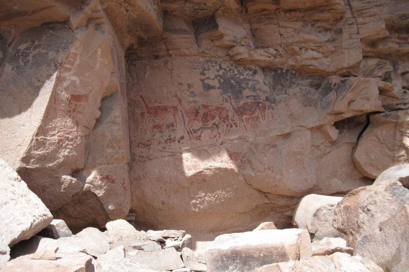 Museo de Arte Precolombino estrena inédita exposición sensorial que recrea la inmensidad del arte rupestre