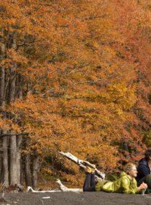 Conguillío se convertirá en el primer Parque Nacional en promover un Turismo Cero Emisión