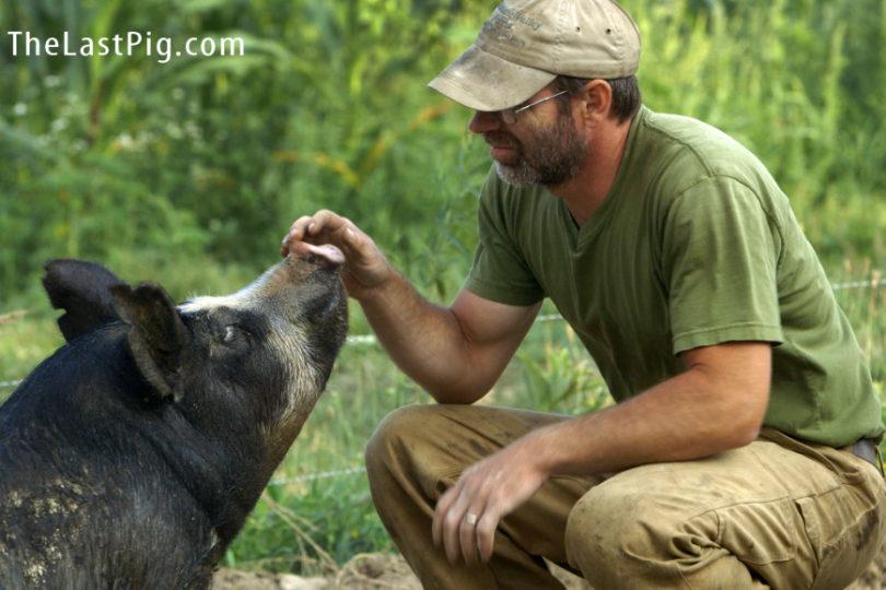 """""""The Last Pig"""", estremecedor documental muestra cómo criador de cerdos decide salvarlos del matadero"""