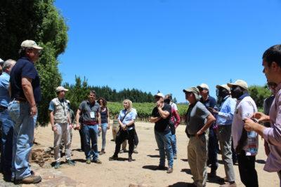 Incendios forestales: CMPC detalla su plan de acción ante expertos internacionales