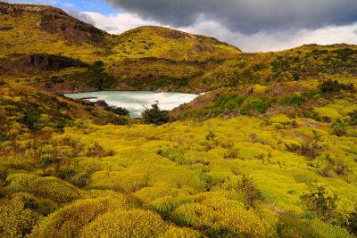 Postulación abierta: los 12 hermosos parques nacionales donde podrás trabajar este verano