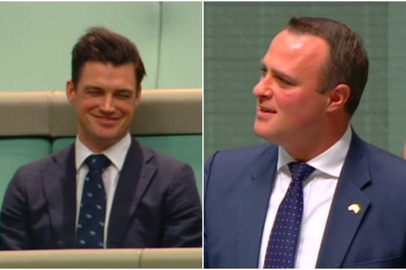 VIDEO   Diputado australiano pide la mano de su novio en pleno debate por matrimonio igualitario