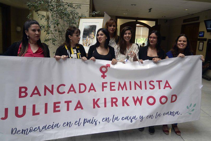 """VIDEO  """"Creemos en la lucha contra el patriarcado"""": Karol Cariola explica la creación de la bancada feminista en el Congreso"""