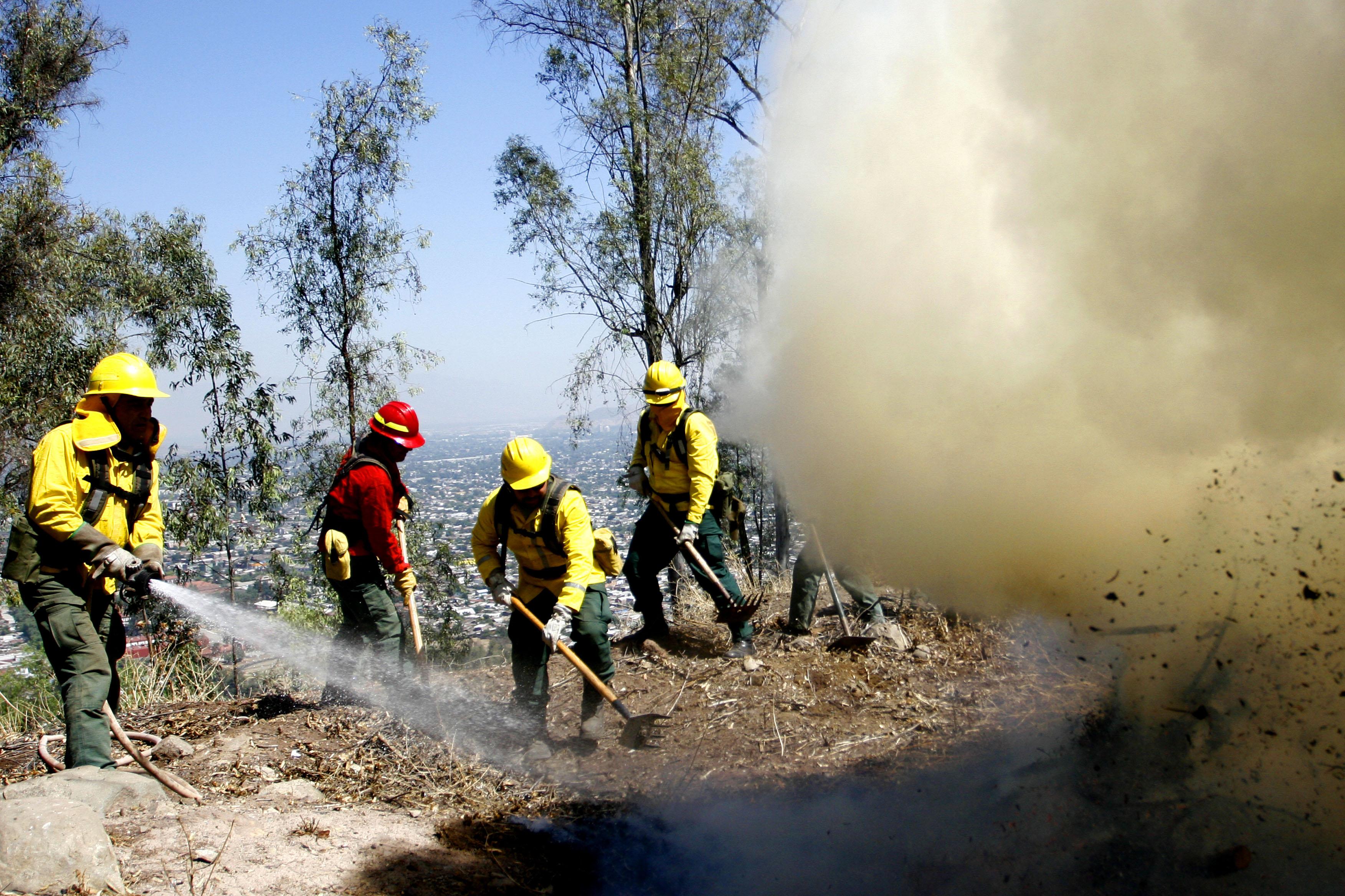 """""""Parque Metropolitano abrirá hoy parcialmente debido a la reactivación de los incendios"""""""