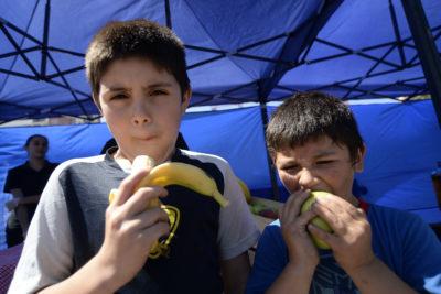 La advertencia de la FAO a Chile: debemos temerle más a la obesidad que al crimen organizado