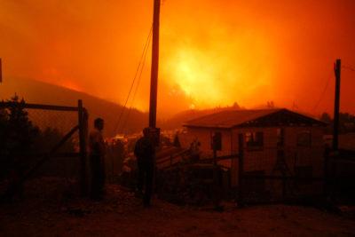 A un año de los incendios, ¿qué hemos hecho? La catástrofe como oportunidad de transformación