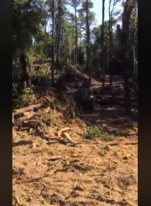 VIDEO |Desastre natural: denuncian destrucción de reconocido sector del Río Trancura en Pucón