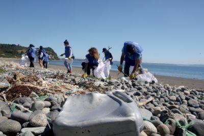 Voluntarios logran retirar más de 2500 kilos de basura en las costas de Chiloé