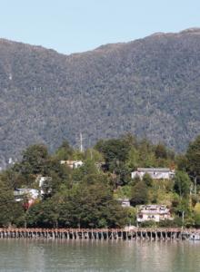 Aprueban creación de un Área Marina Protegida en Caleta Tortel