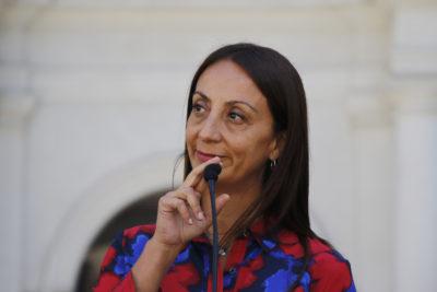 Ministra Cecilia Pérez inicia fase de consulta y encarga tres encuestas