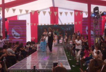 """Fundación se baja de Feria de la Mujer de Maipú: """"Es un insulto generar contenidos orientados a reforzar solo la belleza"""""""