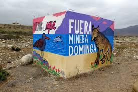 """Directora de Oceana por Dominga: """"Hay una política de Estado que quiere instalar varios proyectos ahí"""""""